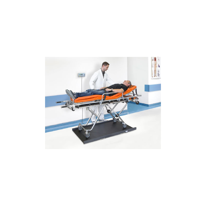 Kern MWS-L Stretcher Scale with Class III Approval