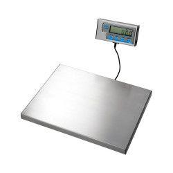 Brecknell WS120 Platform Scale