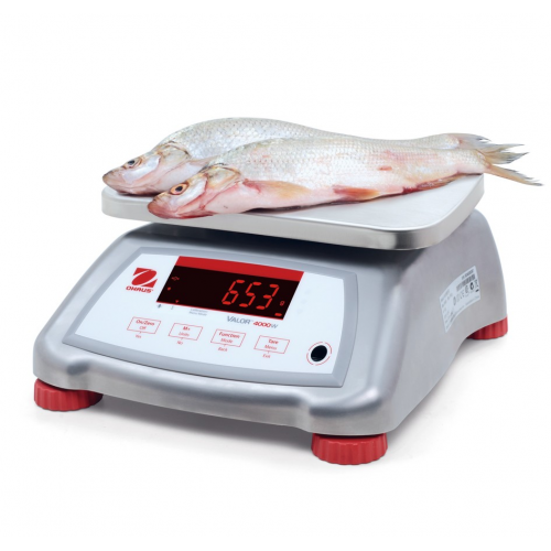 OHaus Valor 4000 Compact Bench Scale with Stainless Steel Housing